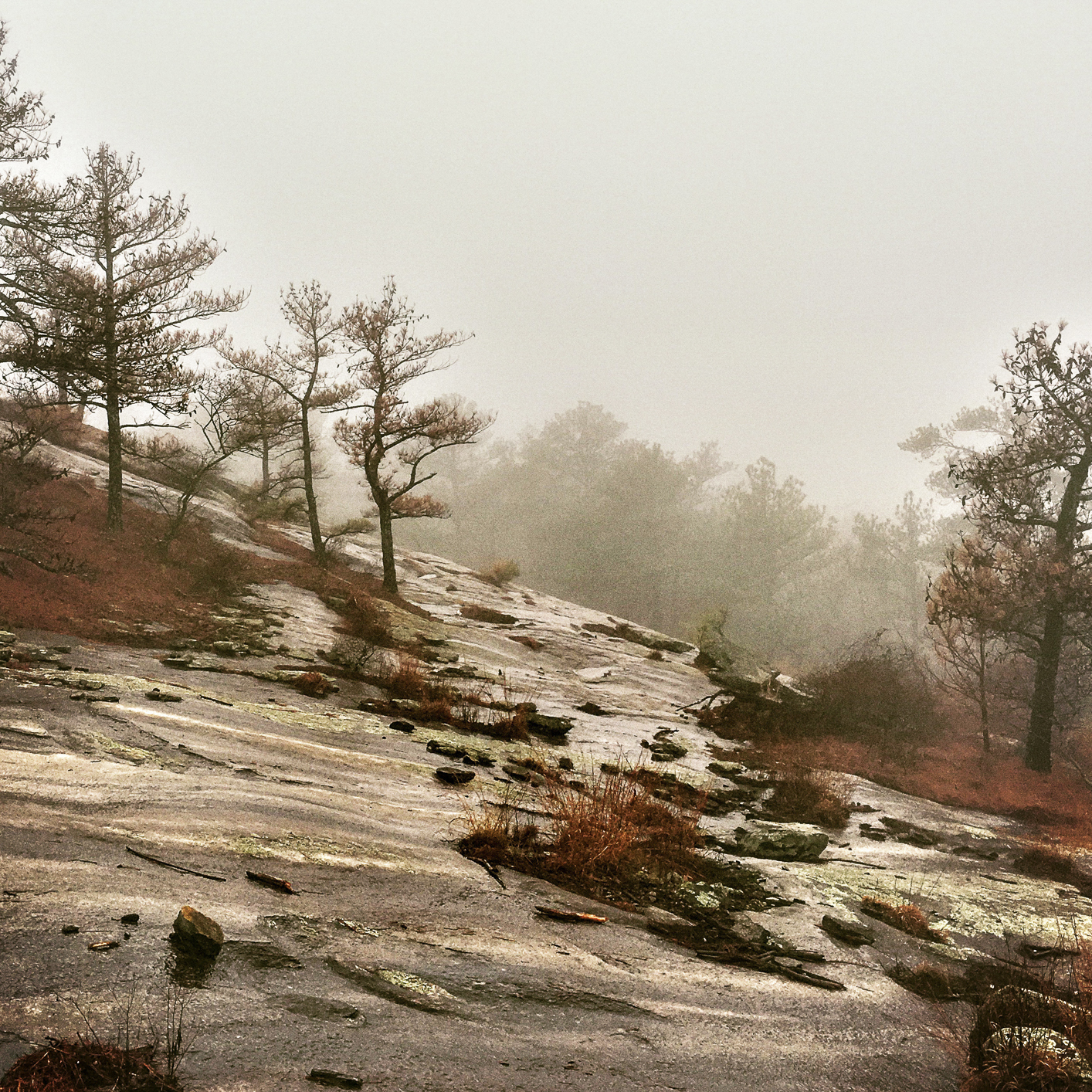 foggy walking trail on Stone Mountain, GA
