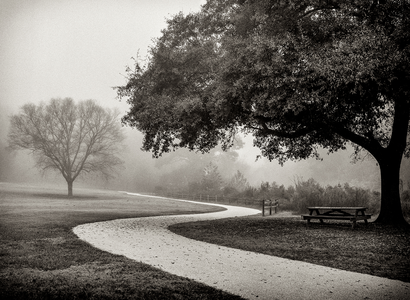 Black and white and fog and rain.